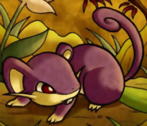 How to Draw Rattata from Pokemon with Easy Step by Step Drawing Tutorial