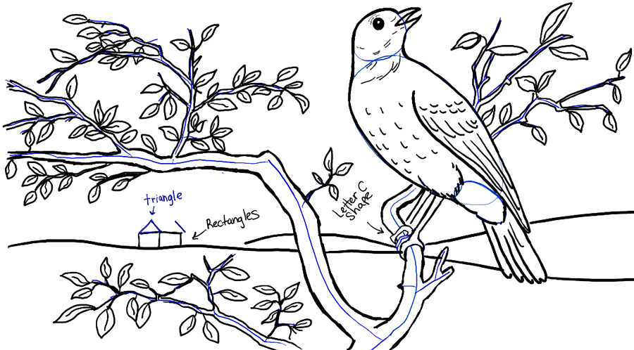step09-bird-in-tree-landscape