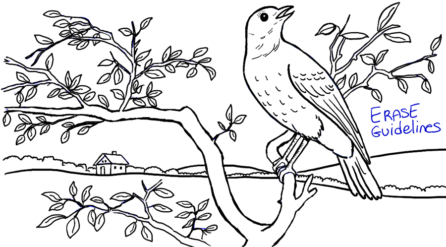 step11-bird-in-tree-landscape